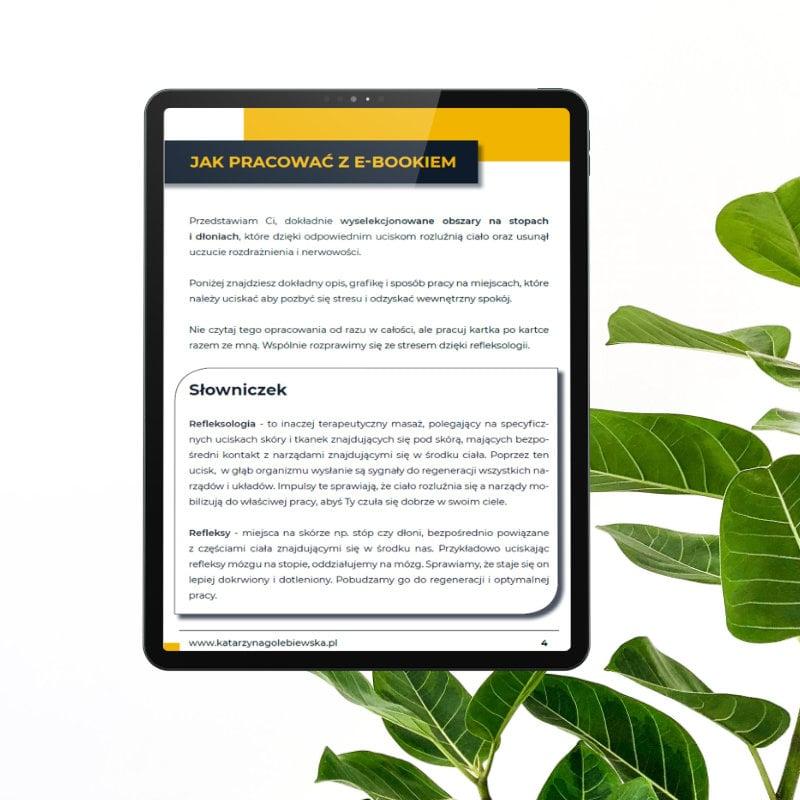 1 strona - Ebook - Jak pozbyć się stresu z Refleksologia